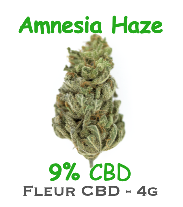 Fleur de CBD Amnesia Haze by DR GREEN